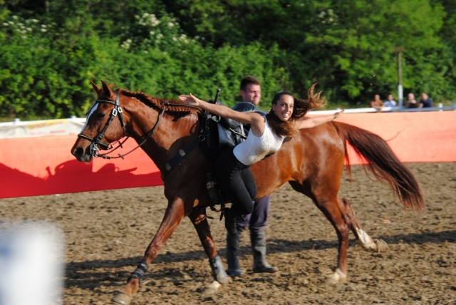 Riabilitazione Equestre