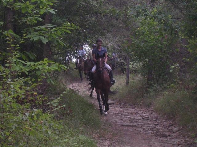 Equitazione di Campagna